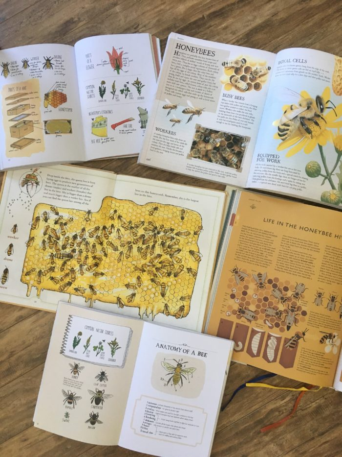 Living Books are fantastic for Nature Study in Charlotte Mason homeschool #homeschool #homeschooling #charlottemason