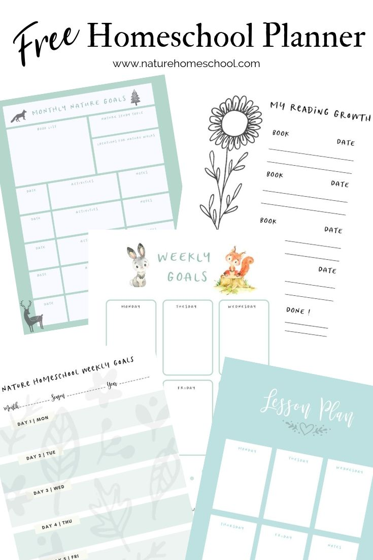 FREE Homeschool Planner (Nature Inspired)