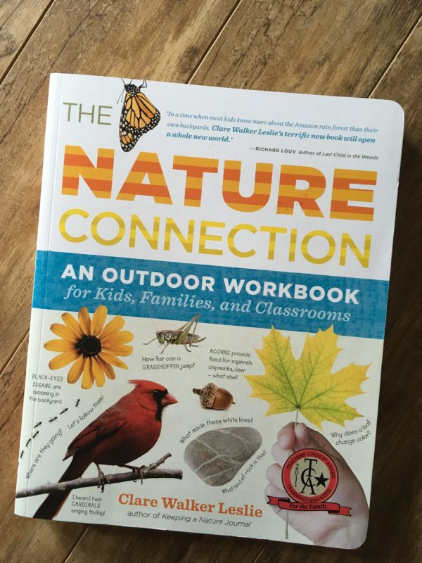 Nature connection workbook