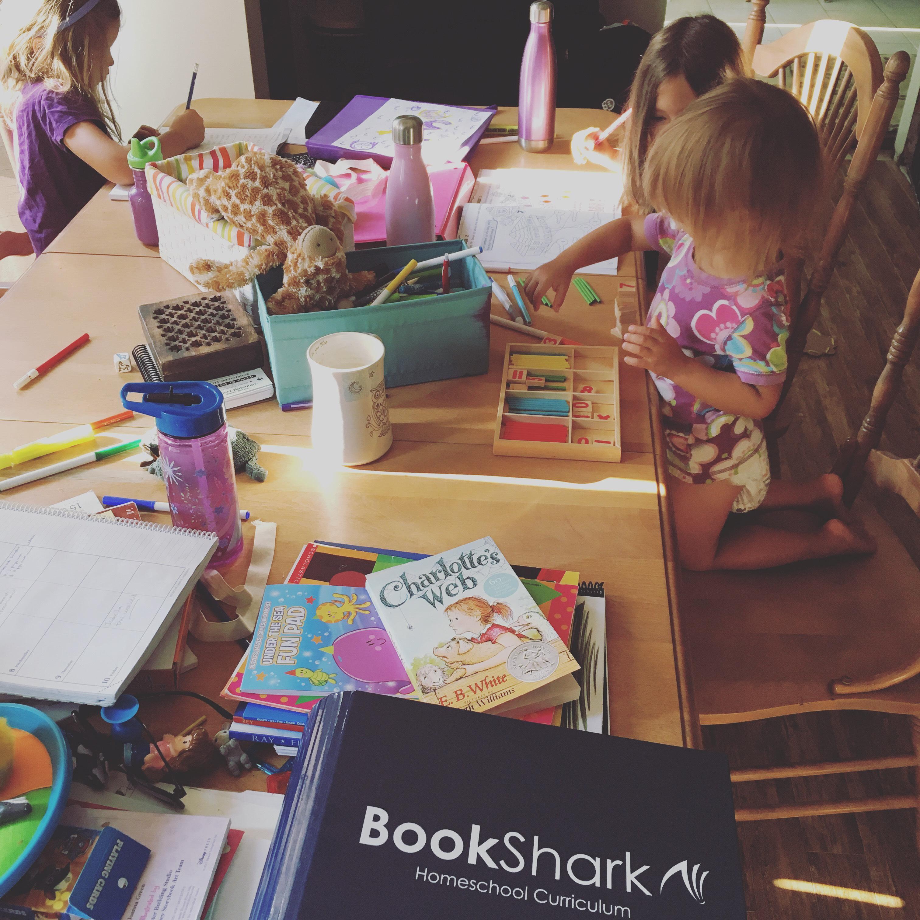 Multi age homeschooling
