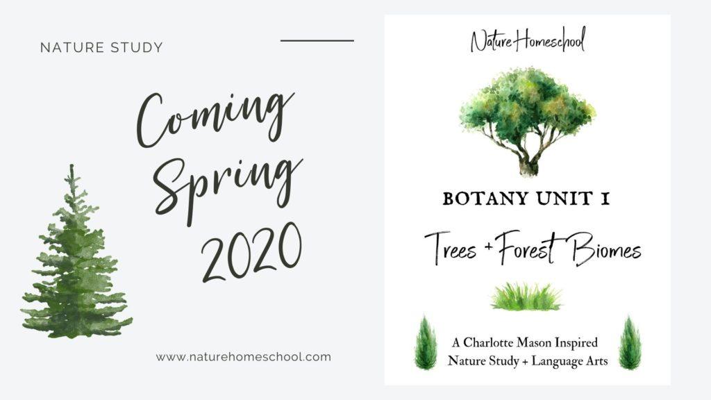 Nature Homeschool Unit Studies