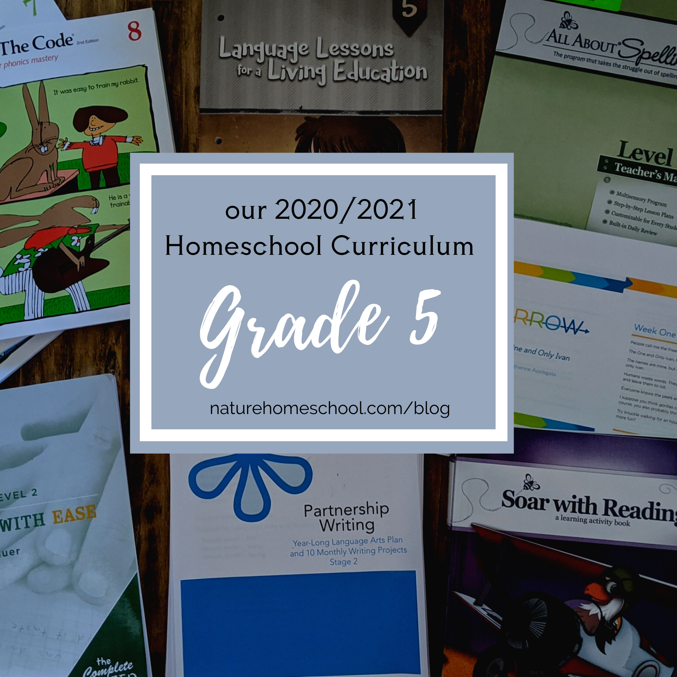 Grade 5 Homeschool Curriculum