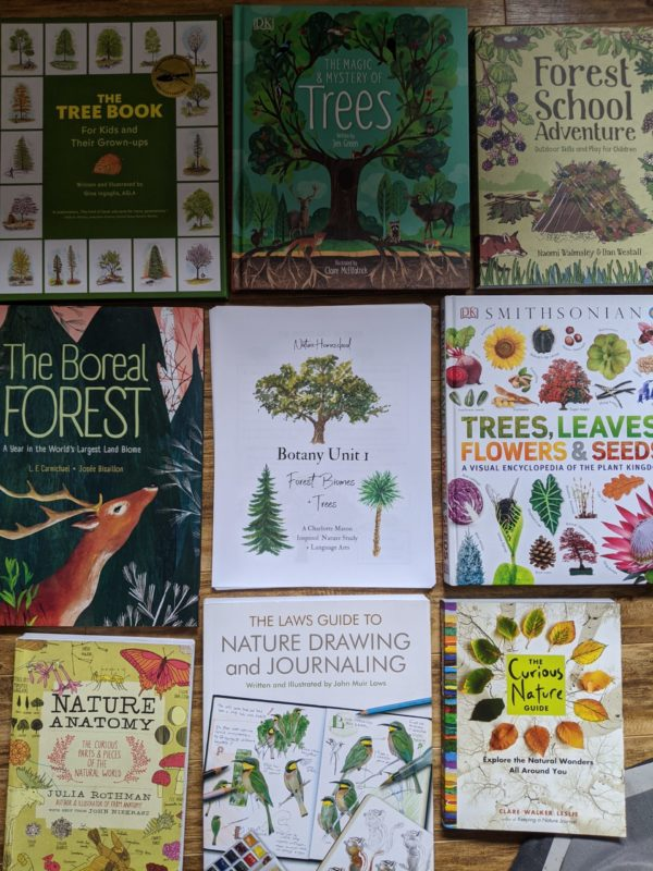 Nature Homeschool Tree Study for Kids