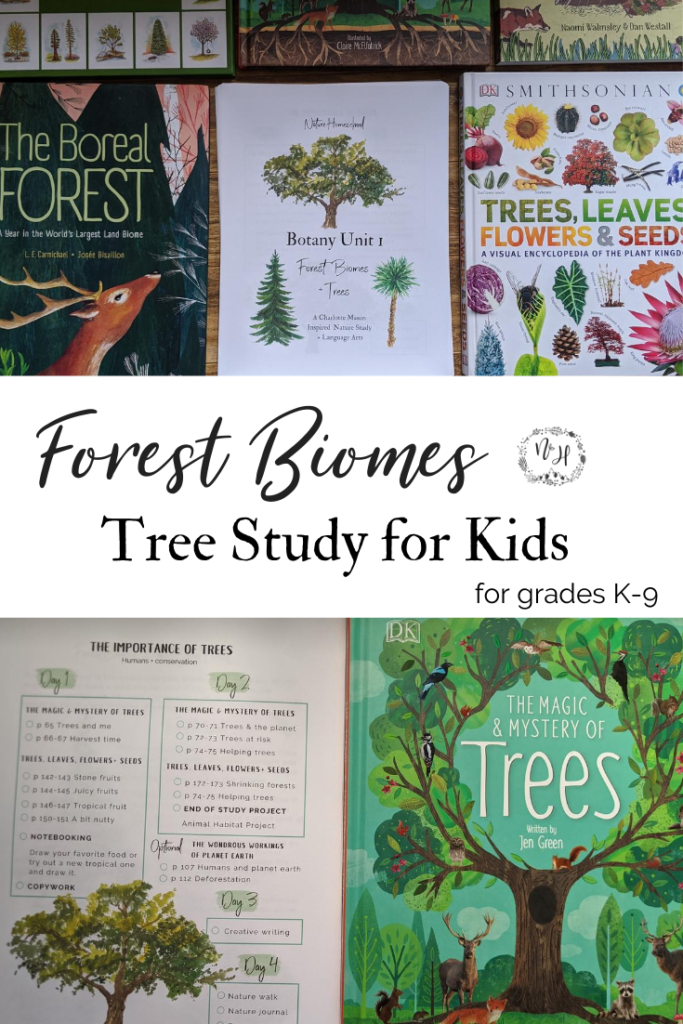 Tree Study for Kids